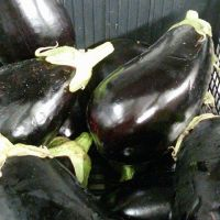 7-verdure1